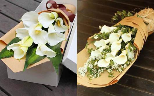 我们花店的马蹄莲鲜花-花店代送花