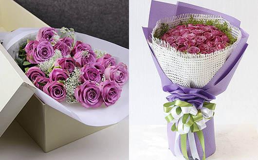 玫瑰花速递紫玫瑰系列礼品