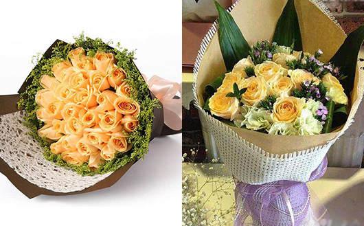 孕妇适合养什么花-香槟玫瑰有益于孕妇的情绪调节