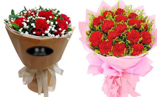 送孕妇什么礼物好-红康乃馨代表喜庆气息的问候
