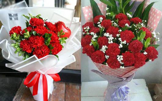 去看产妇送什么花-红色康乃馨照片