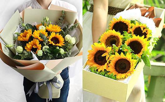 孕妇住院送什么礼物好-向日葵鲜花礼品