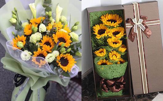 送什么礼物给孕妇最好-向日葵