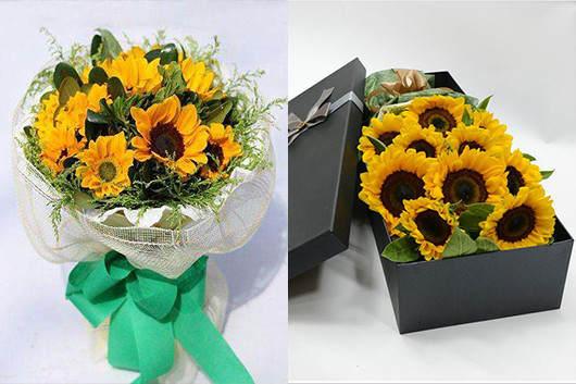 送老师什么花最好-送象征老师阳光精神的向日葵