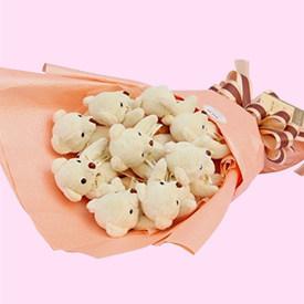 可爱粉色小熊花束/小熊卡通花束