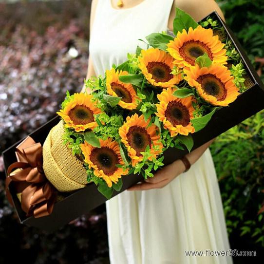 阳光的祝福 - 盒装向日葵花束