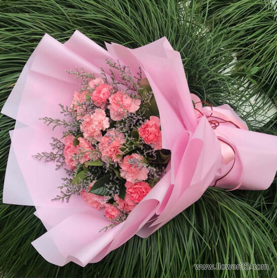 开心每天 - 康乃馨鲜花店