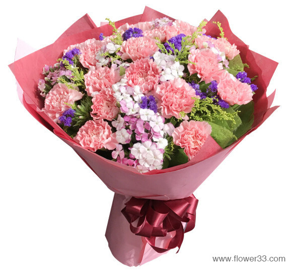 暖暖的关怀 - 母亲节鲜花康乃馨