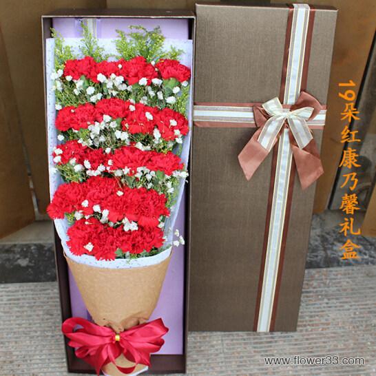 快乐同享 - 19朵红康乃馨礼盒