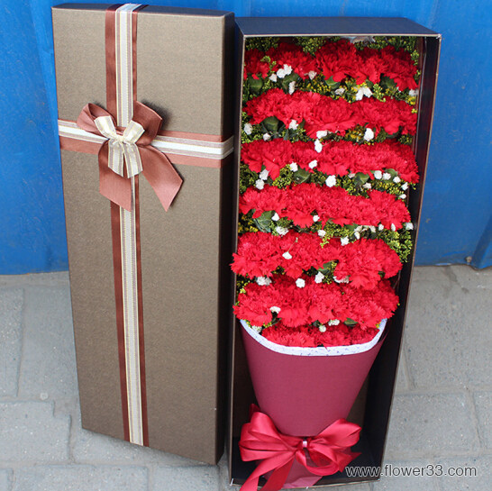 鲜花代表我的心 - 康乃馨鲜花预定