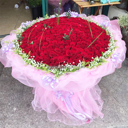 我的女神我的爱 - 999朵红玫瑰大束玫瑰